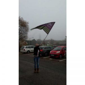Large Hand Waving Flag
