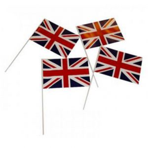 Printed Hand Flags (pack of 50) - Fabric